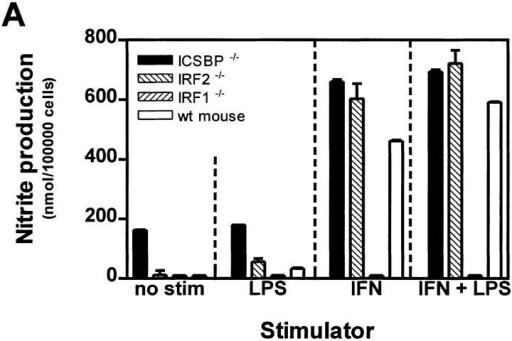 NO production and respiratory burst in PEM cultures. PEMs  of mice deficient for different IFN-related transcription factors were cultured as described in Fig. 3. (A) After 42 h NO production was measured  by determination of nitrite accumulation in the culture supernatants by  using Griess reagent. Values are calculated as nmol nitrite per 105 cells.  One of three independent and comparable experiments is shown. (B)  Respiratory burst capacity of the same PEMs was determined by measuring H2O2 production by chemiluminescence after stimulation with PMA.  Values were first calculated as nmol H2O2 per 105 cells, and then a stimulation index of stimulated versus unstimulated cultures was determined  (stimulation index of unstimulated culture = 1). Error bars indicate standard deviation.