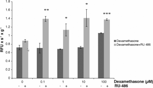 Effect of dexamethasone plus or minus the glucocorticoid receptor antagonist RU486. HLECs were incubated with dexamethasone at concentrations ranging from 0 to 100 µM for 24 h with/without 10 µM of the glucocorticoid receptor antagonist RU-486, after which apoptosis was determined by the caspase-3 assay. No protection of human lens epithelial cells against dexamethasone-induced apoptosis was seen by 10 µM RU-486. Instead, simultaneous incubation with RU-486 significantly increased the proapoptotic effect seen by dexamethasone. Cells exposed to 10 µM RU-486 alone showed no increase in caspase-3 activity. Mean ±SEM from 3 separate culture wells are shown from one of four experiments with similar results; the asterisk indicates a p<0.05, the double asterisk indicates a p<0.01, and the triple asterisk indicates a p<0.001.