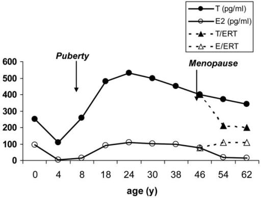Average Estradiol E2 And Testosterone T Levels Acro -7225