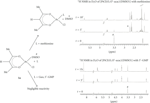 1H NMR spectra in D2O (400.13 MHz, standard TSP) of 1a with excess of L-methionine and 5′-GMP at different reaction times. Rapid reaction with L-methionine (decreasing coordinated (#) and increasing free DMS (∗) signals) and negligible or very slow reaction with 5′-GMP were observed.
