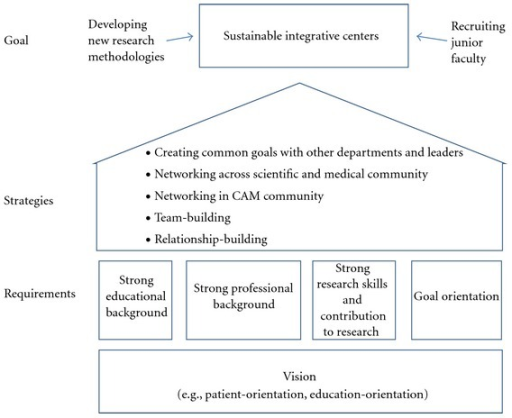 Important factors for the establishment and long-term sustainability of integrative centers.