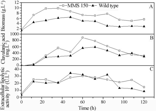 Comparison of the biomass (a), clavulanic acid (b) and lipolytic activity (c) between the mutant and wild type strains cultivated in the modified complex medium lacking glycerol.
