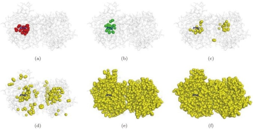 The visualization of pockets (PDB accession code: 1jd0).(a) The optimal pocket, (b) the best matched component produced by the proposed method, (c), (d), (e), and (f) are the atoms recognized by the STP method for the threshold values 80, 60, 40, and 20, respectively.