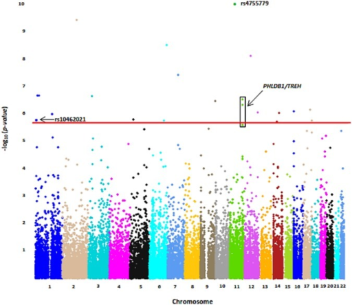Manhattan Plot of Common Variant Association Analysis with Upper Quartile of PAI-1 distribution.Only markers on chromosomes 1–22 are presented above; regions from the X chromosome, Y chromosome, pseudo-autosomal region of the X chromosome, and mitochondrial markers have been excluded. Top three significant markers are labeled in bold. Red Line represents FDR significance threshold (2.57 x 10−6). Loci with more than one significant variant are signified by a box. Noteworthy significant associations are labeled in bold.