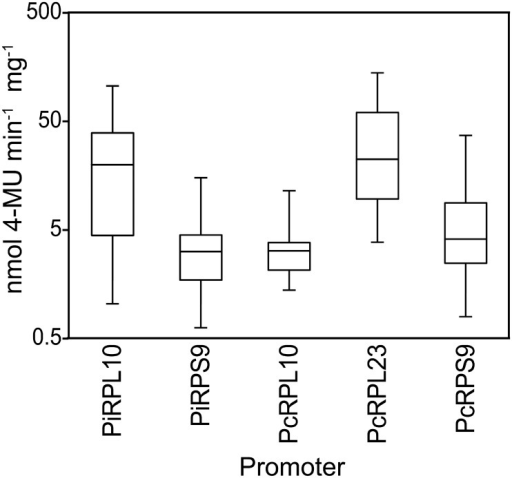 GUS expression driven by five ribosomal protein promoters in stable transformants.The box plots for each gene reflect the distribution of activities from a minimum of ten independent transformants for each construct, which employed 500-nt promoter fragments from P. infestans (Pi) or P. capsici (Pc) genes. Expression driven by the PiRPL23 promoter (PiL23) is not shown due to its instability.