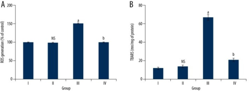 Plumbagin reduces oxidative stress in rats with cardiac I/R injury. (A) Plumbagin inhibits ROS generation: The results are expressed as ROS generated (%) when compared to sham rats. (B) Plumbagin inhibits Lipid peroxidation: The results are expressed as nanomoles of TBARS formed/mg of protein. Results are expressed in nM/mg of protein. a. p<0.05, when compared to sham group. b. p<0.05, when compared to I/R rats. Group I (sham); Group II (Plumbagin); Group III (MI/R rats); Group III (Plumbagin +MI/R). Results are given as the mean ±SEM for 10 rats in each group. (One-way ANOVA followed by Tukey's multiple comparison).