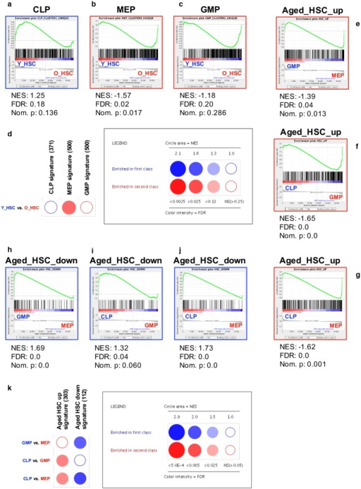 Enrichment of age- and lineage-specific gene expression signatures for human HSPCs.(A-D): Age-associated enrichment of lineage-affiliated signatures. Conventional GSEA against lineage-associated gene sets of h-CLPs (A), h-MEPs (B) and h-GMPs (C) for differential enrichment between young (left) and aged (right) BM h-HSCs (permutation type: phenotypes, FDR < 0.25). Significantly enriched signatures are marked with blue borders if enriched to the left, and with red borders if enriched to the right. (D) High throughput GSEA of progenitor-associated signatures to young and aged h-HSCs using BubbleMap. Saturation of bubbles reflects significance (permutation type: phenotypes, B-Y FDR < 0.25). Color represents enrichment to the left side (blue, young) or to the right side (red, aged). The size of the bubbles reflects quantification of the nominal enrichment score (NES). The number of probes in respective gene sets are indicated within brackets. (E-K): Lineage-associated enrichment of age-affiliated signatures. (E-J) Conventional GSEA against age-associated h-HSC gene sets for differential enrichment to the depicted lineages (permutation type: gene sets, FDR < 0.05). Significantly enriched signatures are marked with blue borders if enriched to the left, and with red borders if enriched to the right. (K) High throughput GSEA of age-associated h-HSC signatures between h-CLPs, h-MEPs, and h-GMPs using BubbleMap. Saturation of bubbles reflects significance (permutation type: gene sets, B-Y FDR < 0.05). Color represents enrichment to the left (blue) or right (red) side.