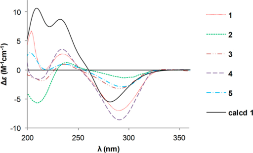 Calculated ECD spectrum of 1 and experimental ECD curves of 1–5.
