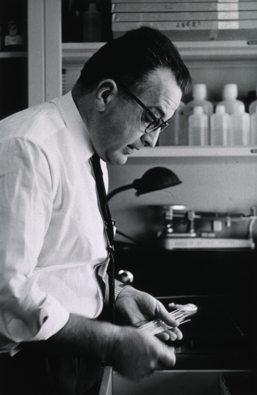 <p>Half-length, right profile, standing in laboratory; holding instruments in hands.</p>