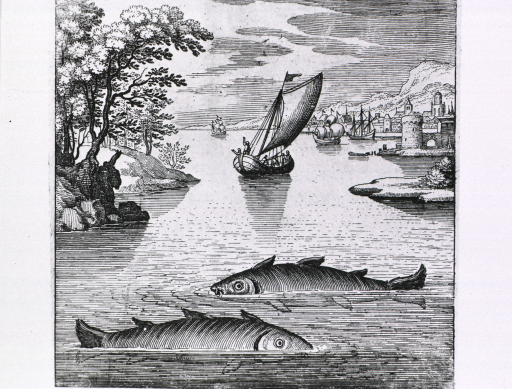 <p>In the foreground are two large fish; looking to the horizon there are several boats, a city on the right, and woodlands to the left.</p>