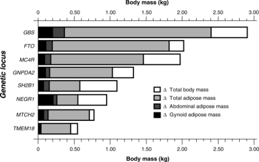 Differences in weight (kg) and total, abdominal and gynoid adipose mass (kg) between major and minor allele homozygotes at each of the seven nominally associated loci (P < 0.1) and between the first and fifth quintiles of the genetic burden score. Data are adjusted for age and sex (n = 2206). As described in the results, nominal gene–sex interactions were observed for total and abdominal adipose mass at the MC4R locus.