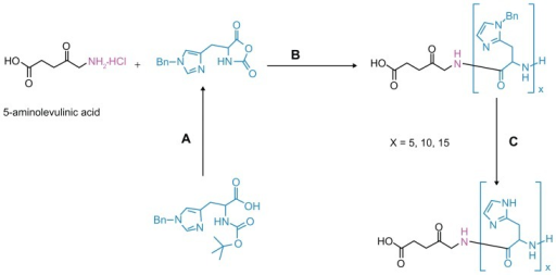 Synthesis procedures of ALA-p(His) by ring-opening polymerization of Bn-His-NCA, followed by deprotection: (A) PCl5, 1,4-dioxane; (B) N, N′-dimethylformamide; and (C) HBr/AcOH, TFA at 0°C.