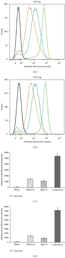 FACS analysis showing enhanced cellular binding of α-hEGFR-IL's in U87 mg (a) and U251 mg (b) cell lines. The targeting efficiency of the α-hEGFR-IL's (green histograms) was evaluated by comparing mean fluorescence intensities (MFI) with hIgG-IL's (orange histograms), or naked liposome (blue histograms) and cells not exposed to liposomes (black histograms). (c), (d) Comparison of the liposomal MFI of U87 mg (c) and U251 mg (d). *P < 0.05, Lp, liposome.