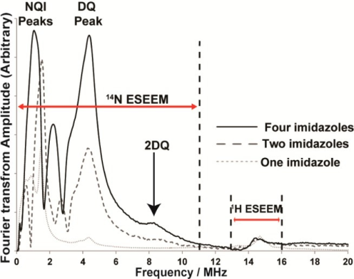 Experimentally obtainedthree-pulse ESEEM spectra of the modelcomplexes at the maximum g⊥ position.Appearance of a peak around 9 MHz in two- and four-imidazole complexesis indicative of multiple imidazole coordination.