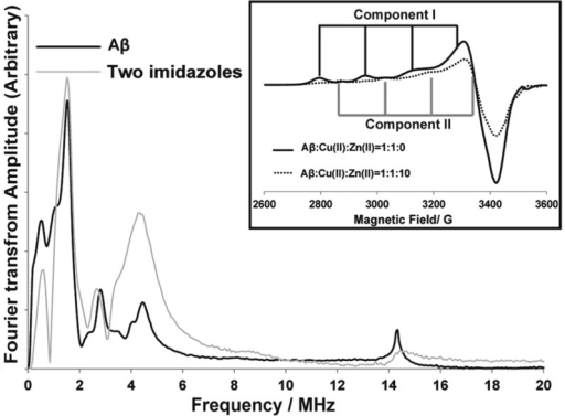 Comparison of ESEEM spectraof Cu(II)–Aβ(1–16)complex at pH 8.7 and the two-imidazole complex. The inset shows theincrease of component II Cu(II) contribution in the presence of Zn(II).