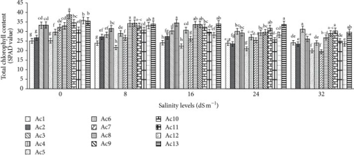 Effect of salinity on total chlorophyll content of 13 purslane accessions. Each bar represents mean values (±SE) of three replicates. Mean values with different lower case letters within a group (i.e., accessions) are significantly different at P < 0.05.