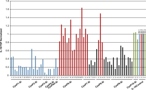 IL-10 accumulation in candidate CysP silenced T0 tobacco lines.IL-10 accumulation remains lower in comparison to the controls in T0 generation of CysP1-CysP10 (except CysP6) silenced lines. Y-axis represents the normalized value of IL-10/TSP for different independent transgenic lines grown at different time period. Blue, red, black and green bars are normalized against their respective color coded IL-10 level in IL-10 control plant. Numbers above the bar represent actual IL-10 level in ng/mg of total soluble protein in control plants. Si, silenced.