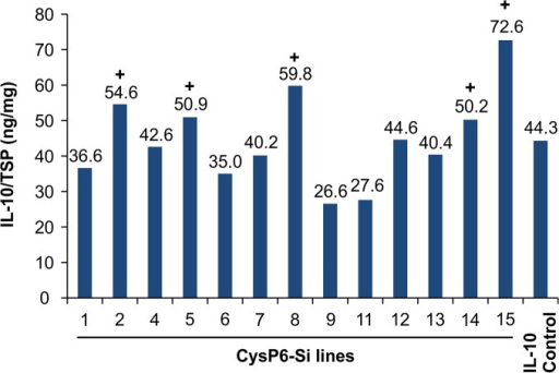 IL-10 accumulation in CysP6 silenced T0 tobacco lines.Measurement of IL-10 level in independent T0CysP6 silenced lines by dsELISA. Data label above the bar represents IL-10 level of individual CysP6 silenced lines expressed as ng/mg of total soluble protein. + indicates the CysP6 silenced lines with higher level of IL-10 accumulation in comparison to the IL-10 control. TSP, total soluble protein; Si, silenced