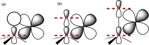Different overlap situations for the metal d orbital with (a) a carbon–hydrogen bond and (b) a carbon–halogen bond.