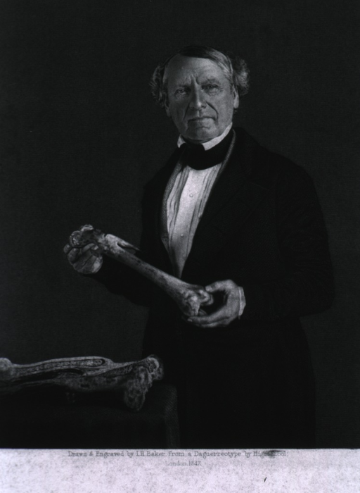 <p>Half-length, left pose, full face; holding bone, other bones on table in foreground.</p>
