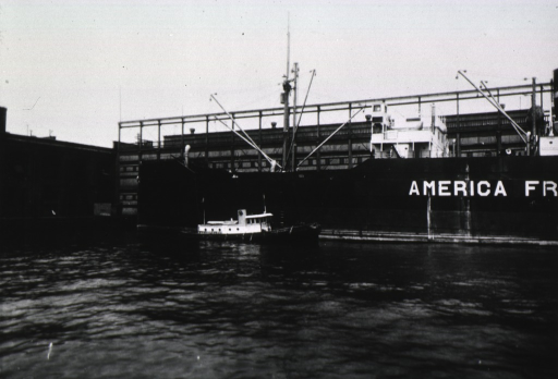 <p>View of U.S. Public Health Service boat alondside a ship in New York Harbor during a visit by League of Nations fumigation experts to the New York Quarantine Station.</p>