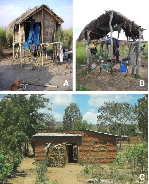 Shamba houses (A & B) and main house in a village (C).