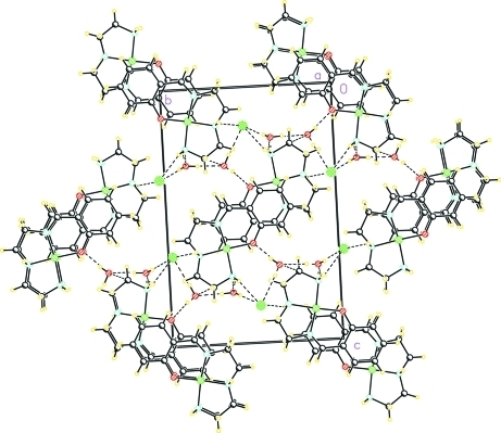 Part of the crystal structure of (I), showing the formation of the two-dimensional network parallel to the (001) plane. Hydrogen bonds are shown as dashed lines.