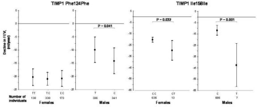 Effect of SNPs in TIMP1 on longitudinal decline in FEV1, stratified by sex. Mean adjusted declines in FEV1 (in ml/yr) are shown per genotype; bars represent 95% confidence intervals.
