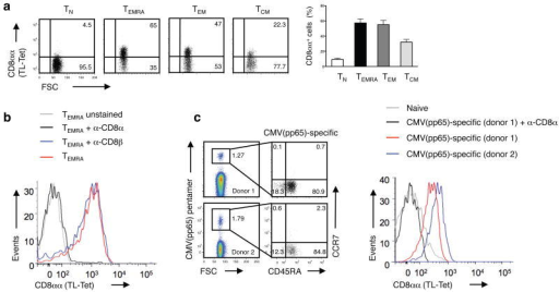CD8αα expression marks effector memory CD8αβ T cells in humans(a) Expression of CD8αα on polyclonal human naive (TN; CCR7+CD45RA+), recently activated effector-memory (TEMRA; CCR7–CD45RA+), effector-memory (TEM; CCR7–CD45RA–) and central-memory (TCM; CCR7+CD45RA–) CD8+ T cells was measured by TL-tetramer staining. The numbers indicate the percentage of TL-tetramerhi cells. Graph depicts pooled data ± s.e.m. on percentage of CD8αα expression on human peripheral blood CD8+ T cells (n = 9). The differences between TN and TEMRA, TEM or TCM were significant (P < 0.001, unpaired t-test). (b) TL-tetramer staining of human TEMRA CD8+ T cells is blocked by anti-CD8α but not anti-CD8β antibody. Data are representative of two independent experiments. (c) CMVpp65-specific CD8+ T cells display a TEM/TEMRA phenotype and persist at high frequency in humans. Data from two representative donors from a total of six persons are shown. The TL-tetramer staining was absent on naive CD8+ T cells and was blocked by an anti-CD8α.