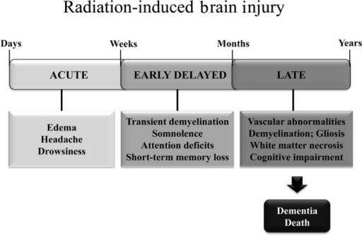 Symptoms and timeline for the development of radiation-induced brain injury in patients treated with fWBI.