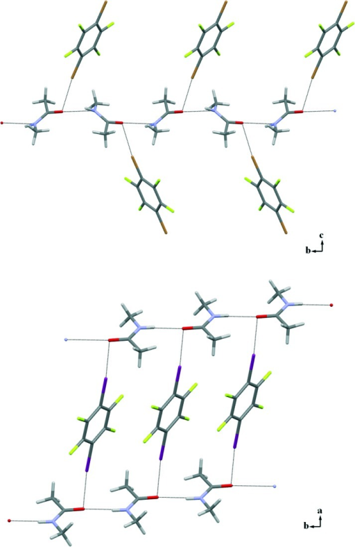Partial crystal packing showing how infinite 1D chains (horizontally positioned) formed by NMA via N–H···O HBs further interact with 14DITFB via Br···O XBs in 3c (top) and I···O XBs in 3f (bottom). The disorder on the NMA molecule is omitted for clarity.
