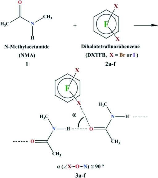 Synthesis of N-methylacetamide (NMA, 1) co-crystals with various dihalotetrafluorobenzenes (DXTFB, X = Br or I). The orthogonal angle (α) is defined as the angle between XB (C–X···O, X = Br or I) and HB (N–H···O), i.e., ∠X···O···N.