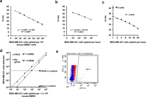 Alu PCR is a sensitive technique for detecting xenograft cells within the bone.Correlation of ct of Alu with number of human MDA-MB-231 cells spiked into murine BMSC (a) and whole mouse femora (b). (c) Cell number could be quantified by Alu qPCR from low numbers of MDA-MB-231GFP sorted into entire mouse humerii (). Comparison of sensitivity of FACS with Alu qPCR (d) in detecting MDA-MB-231GFP cells spiked into 106 mouse BMSCs. Dashed lines are placed at the level of background signal from negative controls (no human cells) using the gating for eGFP shown in (e), n = 3.