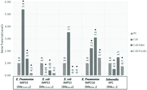 Gene transcript levels in vivo for the genes blaCTX-M-15, blaCTX-M-15 and blaOXA-48, blaNDM-1, blaKPC-2 in their respective isolates IMP33, IMP53, IMP216, and KPC treated with Colistin, Colistin+Meropenem, or Colistin+Fosfomycin at the MIC levels. IMP33: colistin: 5.40 (p = 0.053), colistin and meropenem: 1.38 (p = 0.038), colistin and fosfomycin: 0.19 (p = 0.024). IMP53 (CTX-M-15): colistin: 0.04 (p = 0.038), colistin and meropenem: 0.41 (p = 0.029), colistin and fosfomycin: 0.19 (p = 0.096). IMP53 (OXA-48): colistin: 3.53 (p = 0.221), colistin and meropenem: 0 (p = 0.041), colistin and fosfomycin: 0 (p = 0.049). IMP216: colistin: 2.22 (p = 0.043), colistin and meropenem: 3.10 (p = 0.021), colistin and fosfomycin: 1.44 (p = 0.052). KPC: colistin: 0.53 (p = 0.026), colistin and meropenem: 1.49 (p = 0.980), colistin and fosfomycin: 0.75 (p = 0.042). PC, positive control; Col, colistin; Mer, meropenem; Fos, fosfomycin.