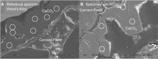 "SEM micrographs showing the indentation points whilst mechanical testing of the calcite (A) calcite formed in reference specimen (B) calcite formed in microbial specimen (0.5% ACDC). ""°"" indicates the points analyzed during indentation. Please refer to Supplementary Figure 3 for higher resolution on indentation."