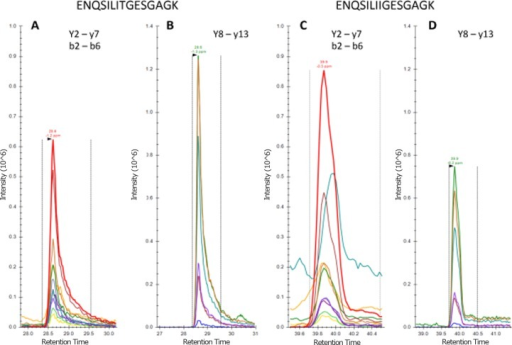 Detection and relative quantification of wild-type and mutated embryonic MyHC.(A and B) Extracted ion chromatograms (XICs) for wild-type and (C and D) mutant embryonic MyHC tryptic peptides eluting at 28.6 and 39.9 minutes are shown as indicated. Note that panels A and C have been adjusted to equal intensity, as have panels B and D.