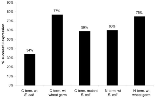 Influence of tag on in vitro expression. We compared 87 targets expressed in E.coli in vitro and in wheat germ. C-term. wt: C-terminal wild type; C-term. mutant: C-terminal mutant; N-term. wt: N-terminal wild type.