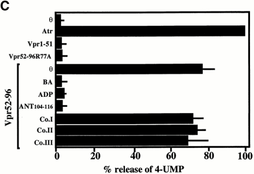 Physical (A and B) and functional (C) interaction between Vpr and liposomes containing ANT. (A) Dose–response curve of FITC-labeled Vpr52-96 binding on ANT liposomes and plain liposomes. (B) Binding of FITC–Vpr52-96 (2 μM) to plain liposomes, ANT proteoliposomes, in the presence or absence of BA (50 μM). (C) Permeabilization of ANT proteoliposomes by Vpr (X ± SD, n = 3). Liposomes were loaded with 4-MUP and exposed for 60 min to Atr (200 μM) or the indicated Vpr-derived peptides (1 μM), in the presence or absence of BA (50 μM), ADP (800 μM), and/or the indicated peptides (same as in B, 0.5 μM, preincubated with Vpr52-96 for 5 min). Then, alkaline phosphatase was added to convert liposome-released 4-MUP into the fluorochrome 4-MU, and the percentage of 4-MUP release induced by Vpr-derived peptides was calculated as described in Materials and Methods.