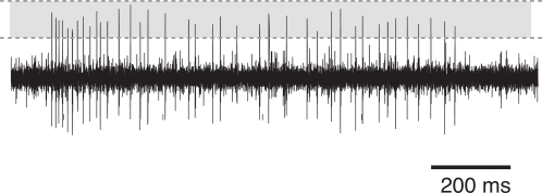 Typical recording trace from a cricket AN2 neuron (T. oceanicus).The figure shows the voltage trace during constant stimulation (duration 1 s) with a sinusoidal tone of 16 kHz frequency. The shaded area depicts the spike detection window, bounded by the lower and upper threshold.