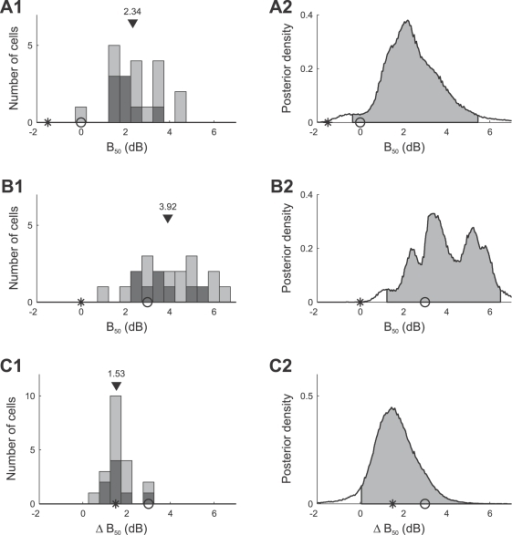 Summary of adaptation induced changes of the response curve parameter B50 for all 20 AN2 cells.Distribution of the mean values of the parameters B50 for individual cells (A1) and combined posterior density (see Methods, Bayesian data analysis) over all cells (A2) after adaptation to the bimodal stimulus distribution. (B1,B2) Distribution and combined posterior density of the parameter B50 after adaptation to the trimodal stimulus distribution. (C1,C2) Distribution and combined posterior density of the change of the parameter B50 between the two stimulus distributions. Symbols depict the values predicted by infomax (stars) and the selective coding hypothesis (circles). Triangles denote the median value. The distribution of cells that showed changes in B50 that were significant (Bayesian posterior intervals, see Methods, Bayesian data analysis) is marked black in (A1,B1,C1). Shaded areas depict the two-tailed 95% posterior intervals in (A2,B2) and the right-tailed 95% posterior interval in (C2).