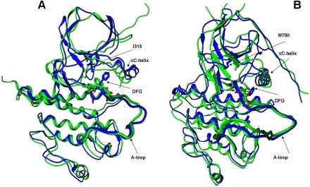 The predicted structural models of the ABL-T315I and EGFR-T790M mutants.(A) Superposition of the predicted structural model of the ABL-T315I mutant (in blue) with the crystal structure of ABL-T315I (active form, pdb entry 2Z60, in green). (B) Superposition of the predicted structural model of the EGFR-T790M mutant (in blue) with the crystal structure of EGFR-T790M (active form, pdb entry 2JIT, in green). The initial ABL and EGFR structures that converged during homology modeling refinement to the crystallographic active conformations of the mutants correspond to the Src-like inactive ABL (pdb entry 2G1T) and Src-like inactive EGFR (pdb entry 2GS7).