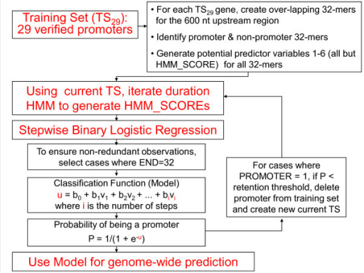 Flowchart of Stepwise Binary Logistic Regression iteration.