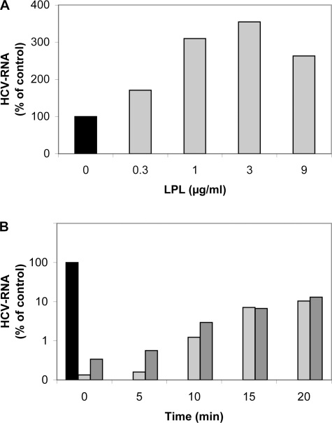 LPL affects HCV attachment and early stages of the virus cell cycle.(A) Effect of LPL on virus attachment to Huh7.5 cells. Huh7.5 cells were pre-incubated with various concentrations of LPL (1–9 µg/ml) for 30 min at 4°C. An aliquot of cell culture supernatant containing JFH-1 was incubated with LPL-pretreated Huh7.5 cells for 30 min at 4°C. The cells were washed and the RNA associated with them was extracted. HCV RNA was quantified by RT-qPCR. (B) Effect of LPL on early steps of HCV infection. JFH-1 was first adsorbed onto Huh7.5 cells by incubation for 45 min at 4°C. Cells were washed with cold medium to remove any unbound virus. Complete medium, warmed to 37°C, was then added and incubated with the cells at 37°C. LPL was added to a concentration of 1 µg/ml at various time points (0, 5, 10, 15 or 20 min) after the transfer of cells to 37°C, with or without the addition of 50 µg/ml THL to block its enzymatic activity. Cells were grown for 24 h. RNA was then extracted and HCV RNA was quantified by RT-qPCR. Results are expressed as a percent of RNA as compared with control cells infected in the absence of LPL.