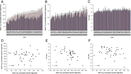 Variation in mitochondrial respiration traits among 40 of the DGRP wild-derived inbred lines. (Panels A-C) Distributions of line means for mitochondrial state 3 (Panel A) and state 4 (Panel B) respiration rates and P:O ratio (Panel C). Data represent means ± standard errors for n = 7 independent replicates. The red and blue bars depict females and males, respectively. (Panel D) Phenotypic correlation (r) between state 3 and state 4 respiration rates in the sex-pooled analysis. (Panel E) Phenotypic correlation between P:O ratio and state 3 in the sex-pooled analysis. (Panel F) Phenotypic correlation between P:O ratio and state 4 in females.