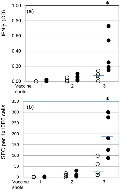 MmmSC-induced recall IFN-γ responses measured by ELISA (a) and ELISPOT (b) using pbmc collected from nonvaccinated (open circles) and vaccinated (closed circles) animals (n = 5) one month after single, double and triple vaccine inoculations.Results represent the net effect of MmmSC (i.e., stimulated cultures minus non-stimulated cultures) and are representative of two experiments. Bars indicate median values and asterisks represent significant difference between vaccinated and naïve groups.