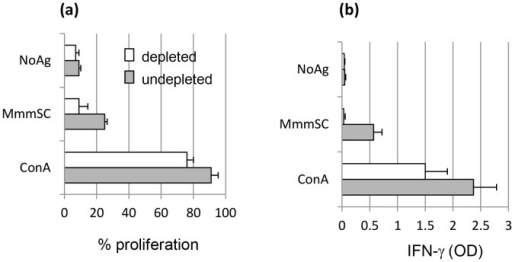 Effect of CD4 depletion on MmmSC-induced recall proliferation (a) and IFN-γ (b) responses of pbmc collected from vaccinated animals.Cells were incubated in the absence (NoAg) or presence of MmmSC Ags (MmmSC), or in the presence of the mitogen Concanavalin A (ConA) as a positive control. Results are expressed as mean percentages (± standard deviation) from three animals.