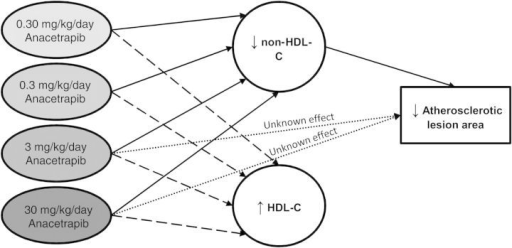 Hypothetical scheme of factors contributing to the effect of anacetrapib on the atherosclerotic lesion area as suggested by statistical analyses. An analysis of covariance was performed to test for group differences in the lesion area with HDL-C and non-HDL-C exposure as covariates. HDL-C was not an independent predictor of the lesion area when non-HDL-C was included as covariate, suggesting that the effect of anacetrapib on atherosclerosis development was mainly mediated through the reduction of non-HDL-C. The higher dosages of anacetrapib (3 and 30 mg/kg/day) also revealed an effect on atherosclerosis that was independent of non-HDL-C, but this effect was not explained by the increase in HDL-C.