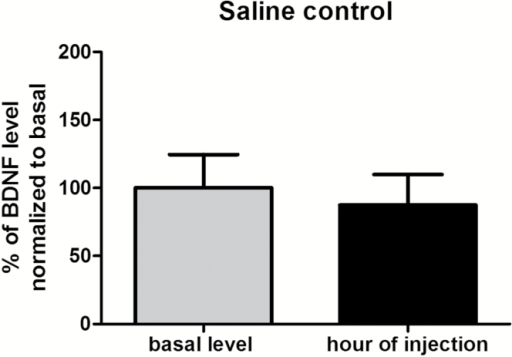 Brain-derived neurotrophic factor (BDNF) levels in control rats at the usual hour of saline injection and on a basal level on withdrawal day 1 (WD1). Each rat received 14 days of saline injection and was sacrificed either at the usual hour of injection or at another time of saline injection on WD1 (basal level). Data (mean ± SEM) are expressed as percent of BDNF level normalized to basal levels (n=6–10) and were compared by a 2-tailed Student t-test.
