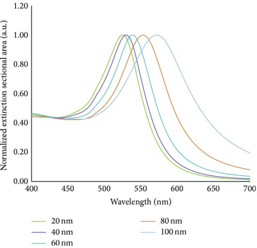 Normalized extinction cross-sectional area for spherical gold nanoparticles of diameters ranging from 20–100 nm. Data was obtained from a Mie theory simulation available online [42].