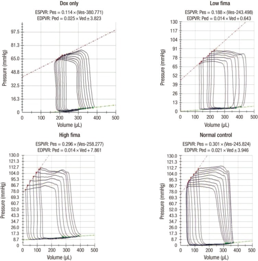 Left ventricular pressure-volume loop by microminiaturized press-volume catheterization. End-systolic pressure volume relation (ESPVR) slopes was significantly decreased in DOX-only and Low-fima groups, whereas slope values was similar to normal control in the High-fima group.